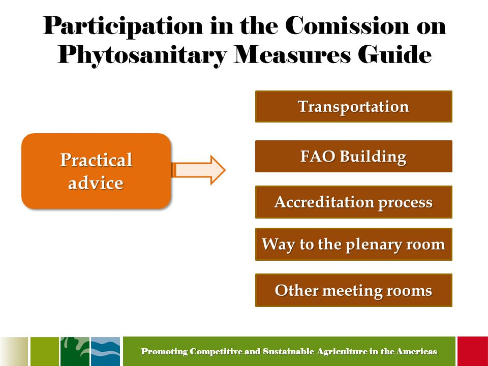 Promoting Competitive and Sustainable Agriculture in the Americas Participation in the Comission on Phytosanitary Measures Guide Transportation FAO Building Accreditation process Practical advice Way to the plenary room Other meeting rooms
