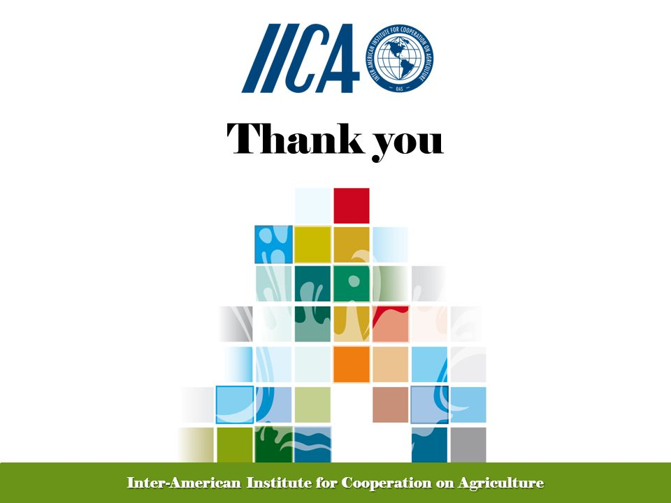 Promoting Competitive and Sustainable Agriculture in the Americas Thank you Inter-American Institute for Cooperation on Agriculture