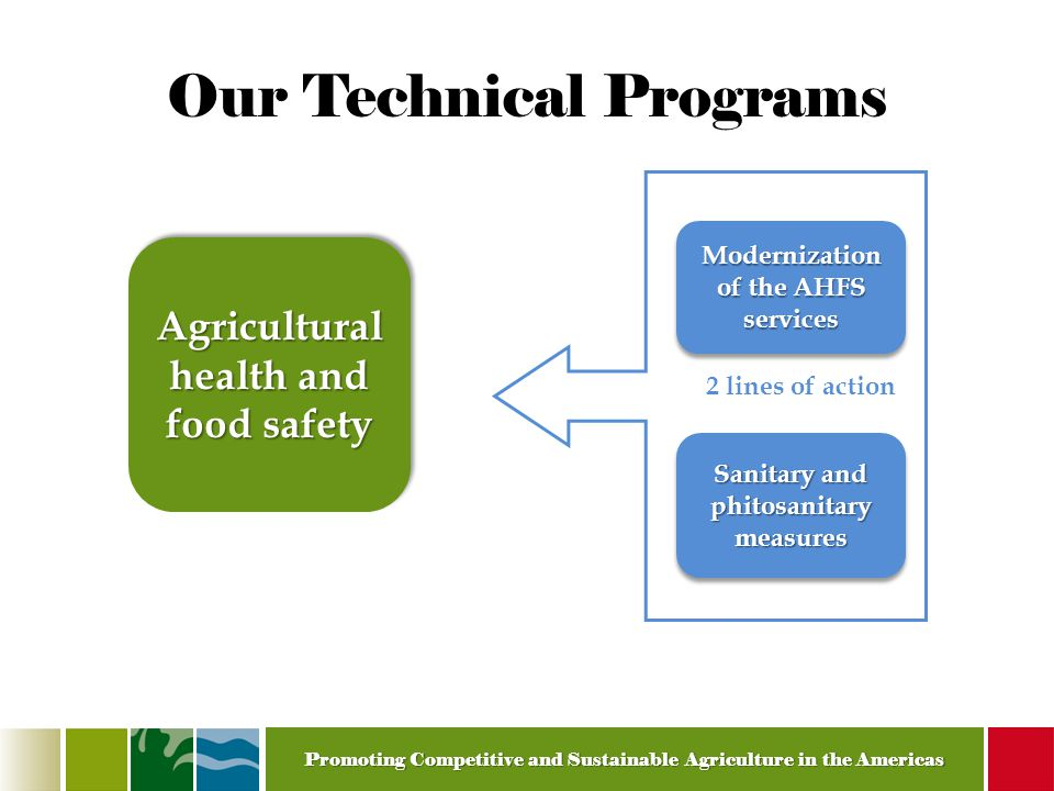 Promoting Competitive and Sustainable Agriculture in the Americas Our Technical Programs Modernization of the AHFS services Agricultural health and food safety Sanitary and phitosanitary measures 2 lines of action
