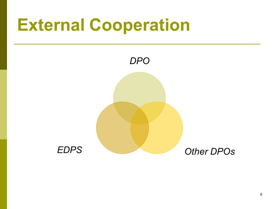 8 External Cooperation DPO Other DPOs EDPS