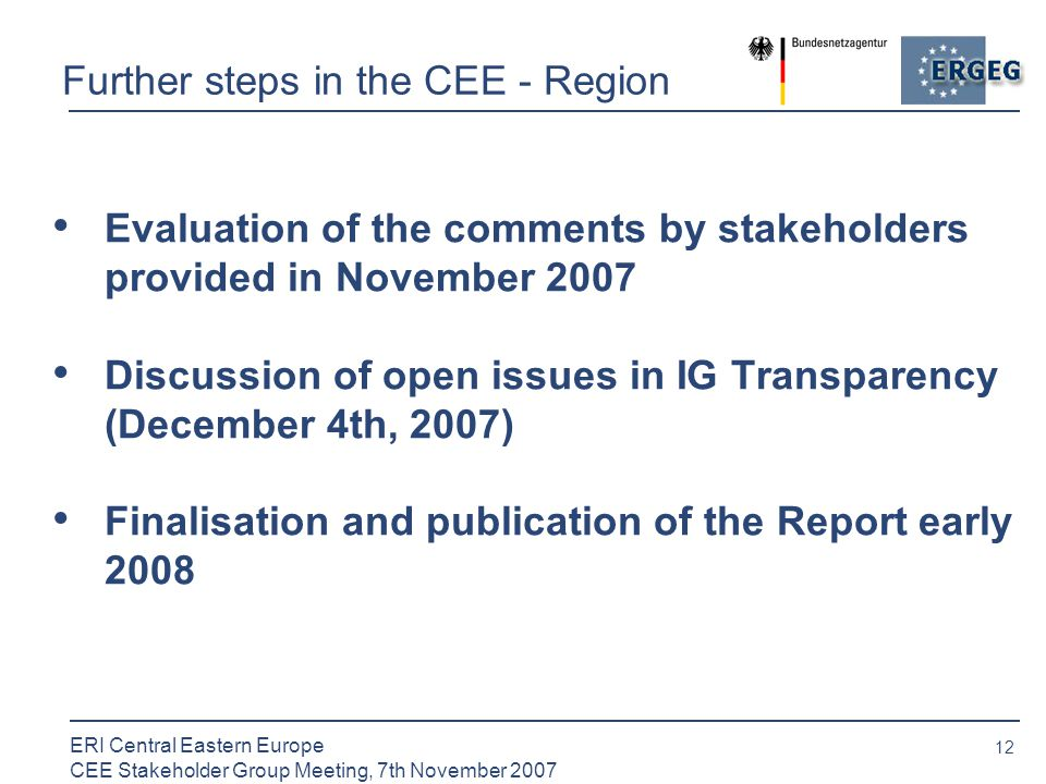 12 ERI Central Eastern Europe CEE Stakeholder Group Meeting, 7th November 2007 Further steps in the CEE - Region Evaluation of the comments by stakeholders provided in November 2007 Discussion of open issues in IG Transparency (December 4th, 2007) Finalisation and publication of the Report early 2008