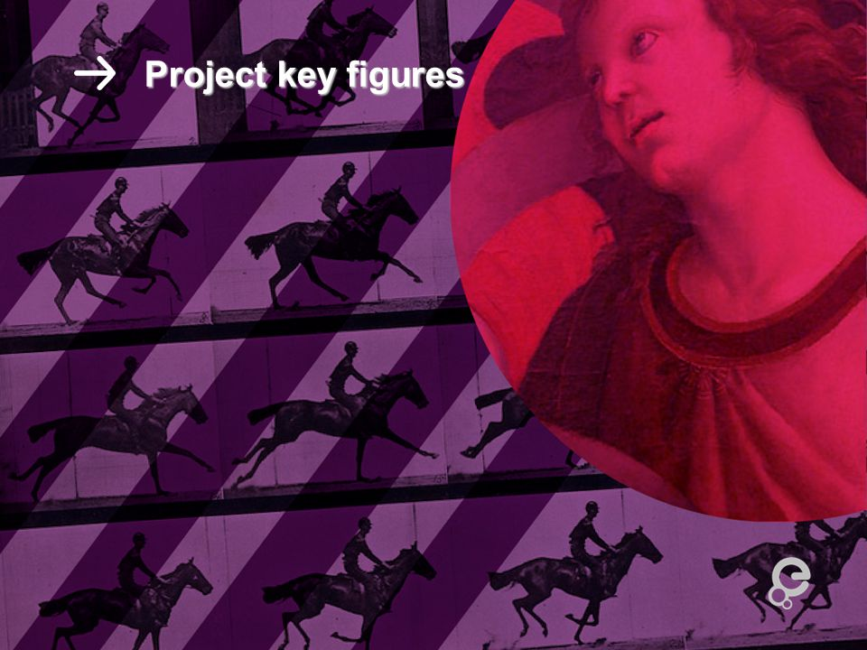 Project key figures