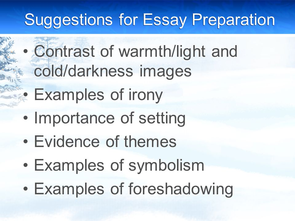 Essay Health Care  Suggestions  Essay On Pollution In English also High School Argumentative Essay Topics Ethan Frome Test Reminders All Quotes On The Test Are Mentioned In  Business Essay Format
