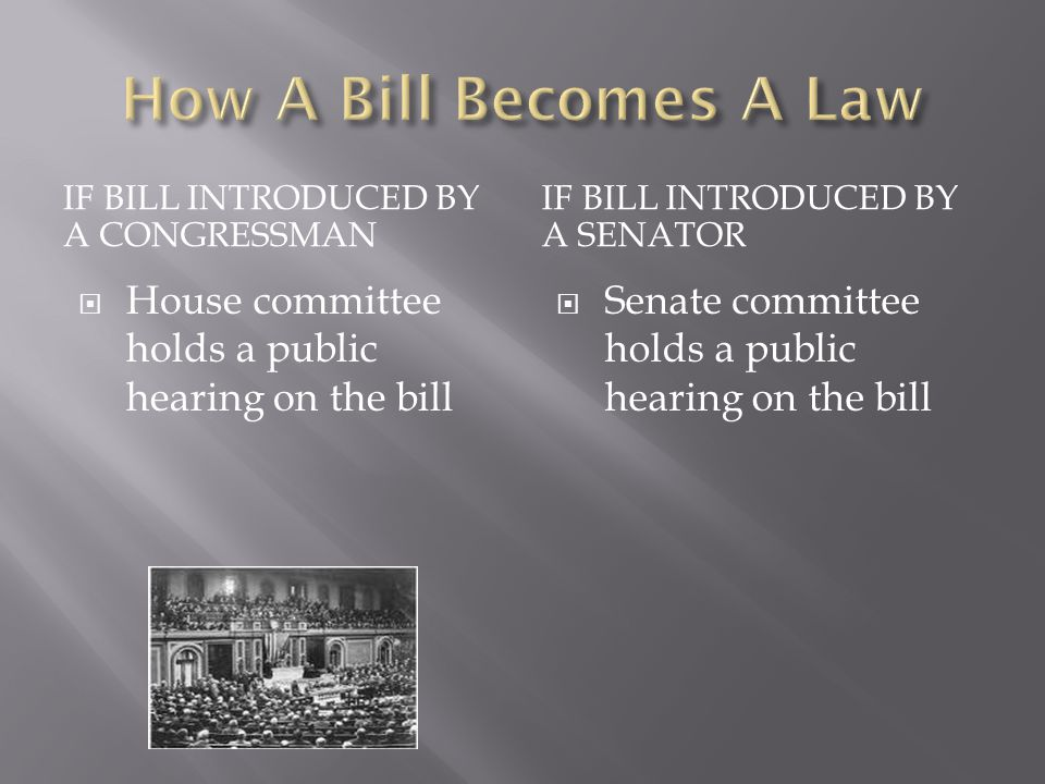 IF BILL INTRODUCED BY A CONGRESSMAN IF BILL INTRODUCED BY A SENATOR  House committee holds a public hearing on the bill  Senate committee holds a public hearing on the bill