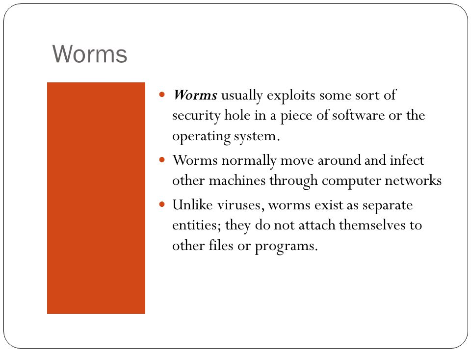 Worms Worms usually exploits some sort of security hole in a piece of software or the operating system.