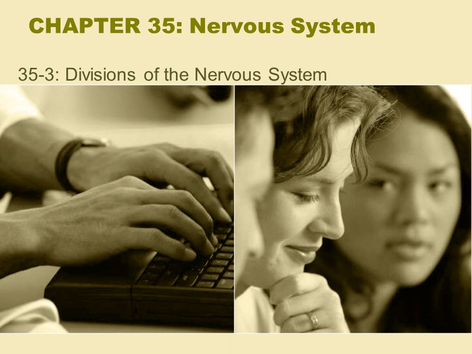 CHAPTER 35: Nervous System 35-3: Divisions of the Nervous System