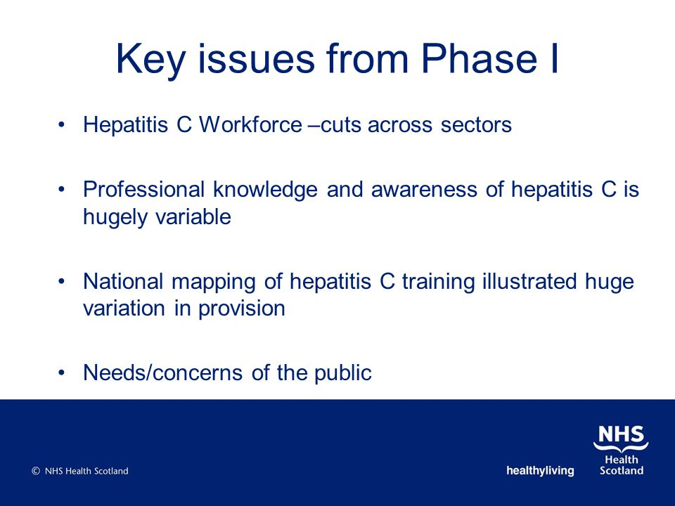 Key issues from Phase I Hepatitis C Workforce –cuts across sectors Professional knowledge and awareness of hepatitis C is hugely variable National mapping of hepatitis C training illustrated huge variation in provision Needs/concerns of the public