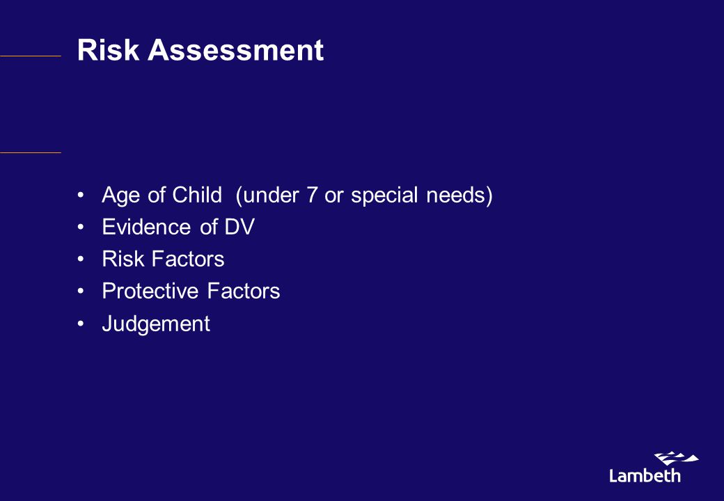 Risk Assessment Age of Child (under 7 or special needs) Evidence of DV Risk Factors Protective Factors Judgement