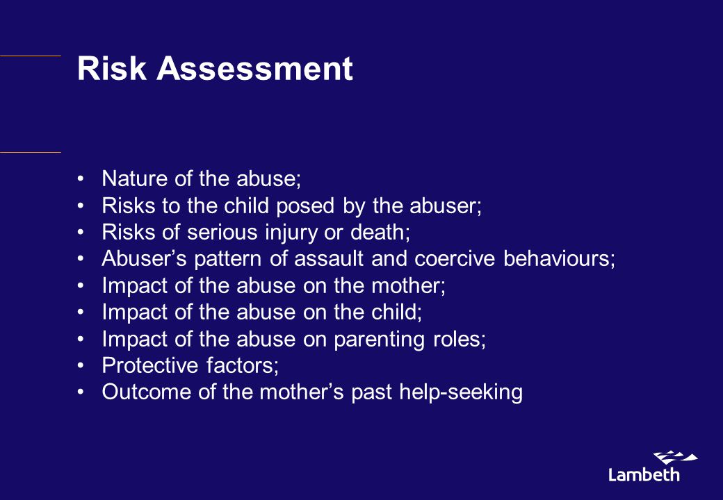 Risk Assessment Nature of the abuse; Risks to the child posed by the abuser; Risks of serious injury or death; Abuser's pattern of assault and coercive behaviours; Impact of the abuse on the mother; Impact of the abuse on the child; Impact of the abuse on parenting roles; Protective factors; Outcome of the mother's past help-seeking