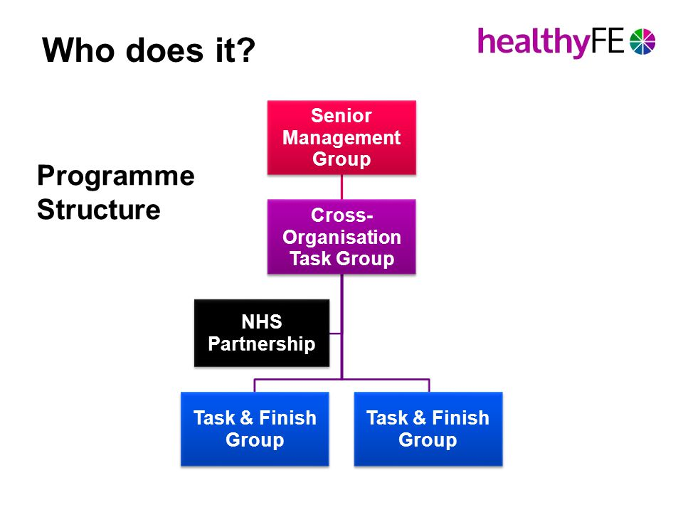 Programme Structure Senior Management Group Cross- Organisation Task Group Task & Finish Group NHS Partnership Who does it