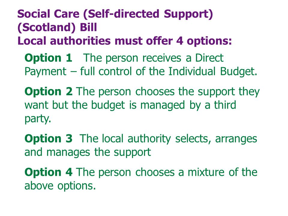 Social Care (Self-directed Support) (Scotland) Bill Local authorities must offer 4 options: Option 1 The person receives a Direct Payment – full control of the Individual Budget.