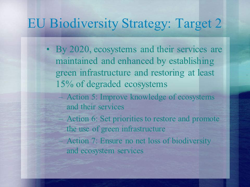 EU Biodiversity Strategy: Target 2 By 2020, ecosystems and their services are maintained and enhanced by establishing green infrastructure and restoring at least 15% of degraded ecosystems –Action 5: Improve knowledge of ecosystems and their services –Action 6: Set priorities to restore and promote the use of green infrastructure –Action 7: Ensure no net loss of biodiversity and ecosystem services