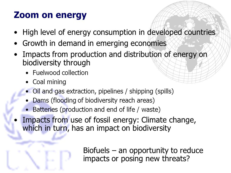 Zoom on energy High level of energy consumption in developed countries Growth in demand in emerging economies Impacts from production and distribution of energy on biodiversity through Fuelwood collection Coal mining Oil and gas extraction, pipelines / shipping (spills) Dams (flooding of biodiversity reach areas) Batteries (production and end of life / waste) Impacts from use of fossil energy: Climate change, which in turn, has an impact on biodiversity Biofuels – an opportunity to reduce impacts or posing new threats