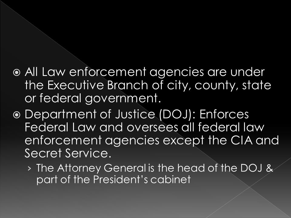  All Law enforcement agencies are under the Executive Branch of city, county, state or federal government.