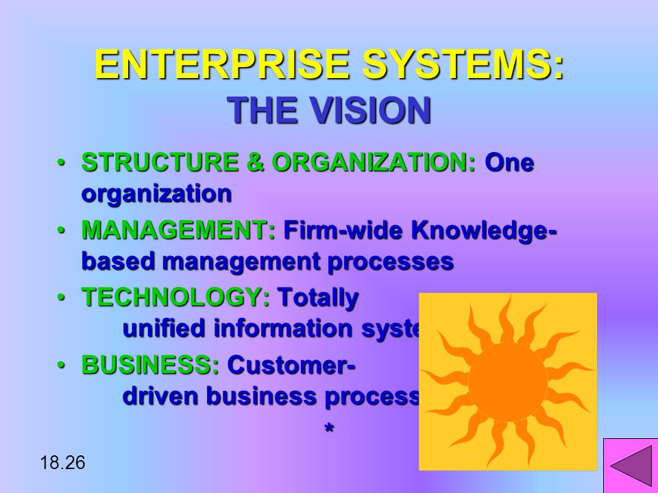 18.25 ENTERPRISE SYSTEMS THE VISIONTHE VISION THE REALITYTHE REALITY*