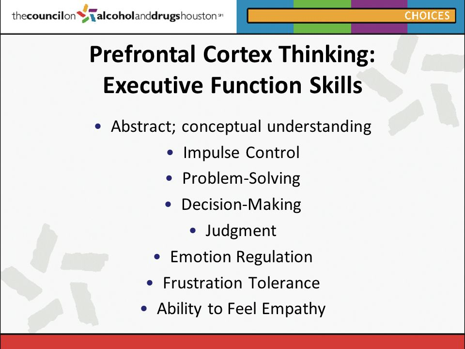 Prefrontal Cortex Thinking: Executive Function Skills Abstract; conceptual understanding Impulse Control Problem-Solving Decision-Making Judgment Emotion Regulation Frustration Tolerance Ability to Feel Empathy