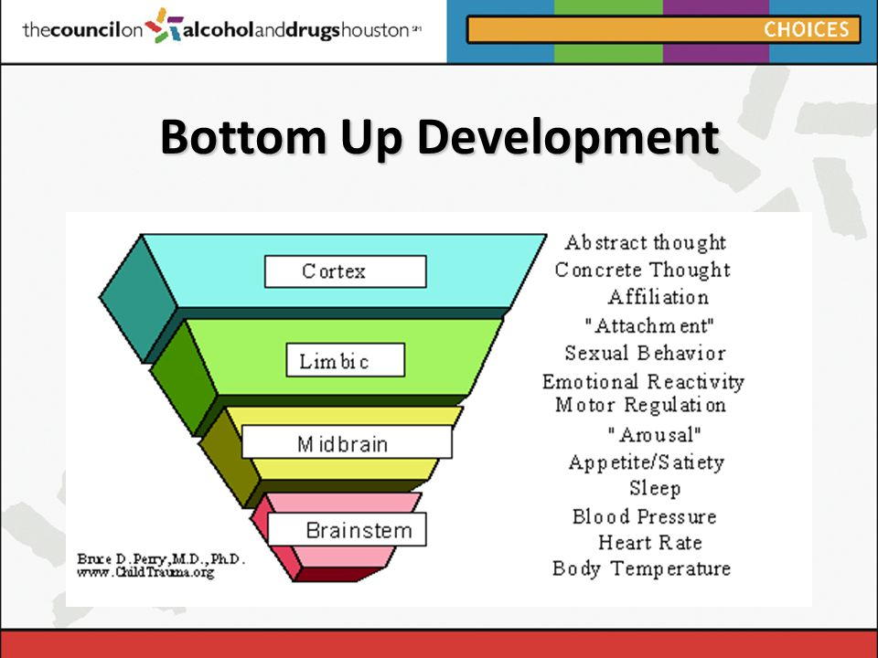 Bottom Up Development