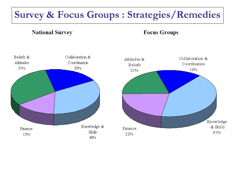 Survey & Focus Groups : Strategies/Remedies Focus GroupsNational Survey