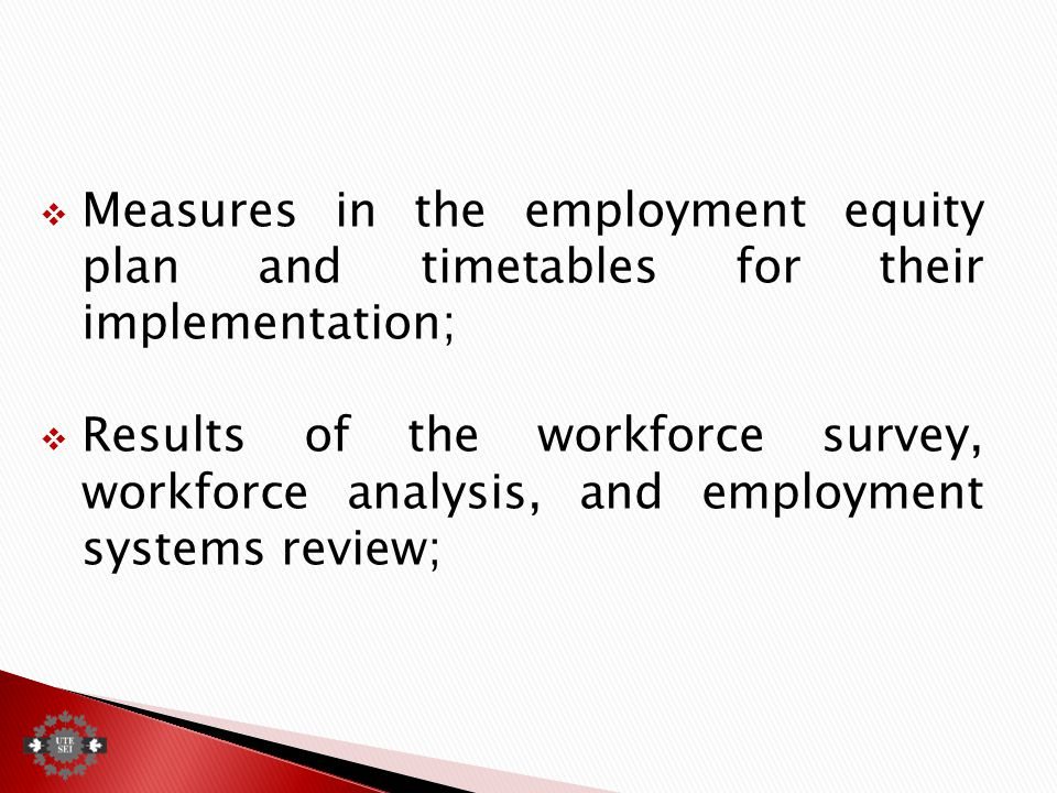  Measures in the employment equity plan and timetables for their implementation;  Results of the workforce survey, workforce analysis, and employment systems review;