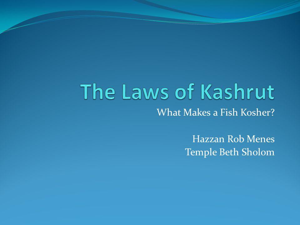What Makes a Fish Kosher? Hazzan Rob Menes Temple Beth